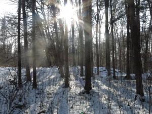 2.Waldläuferbande_20