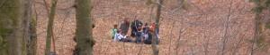 Mit Kindern im Wald