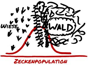 Zeckenpopulation - Verteilung